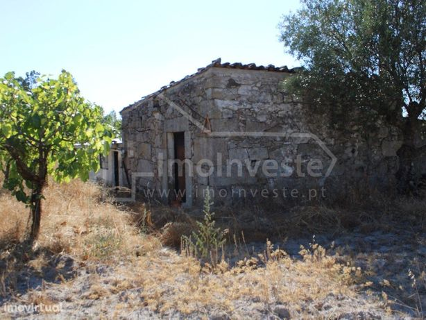 Quinta toda murada com casa em pedra