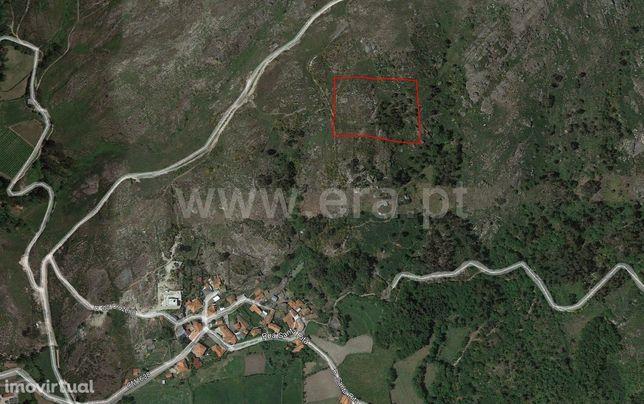 Terreno rústico com 9.424 m2 em Queimadela