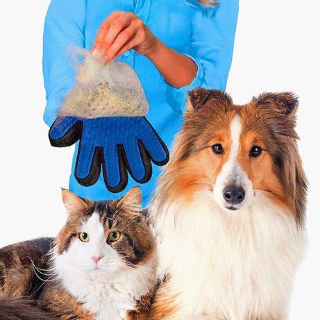 Luva Escovar Cães e Gatos