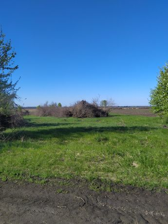 Земельна ділянка під особисте селянське господарство