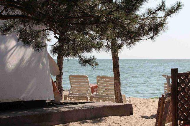 Отдых у моря, на любой вкус! Черноморская коса