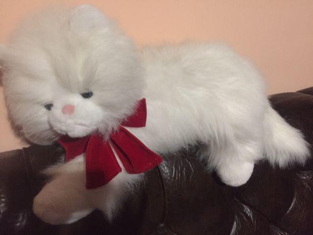 Красивый кот.