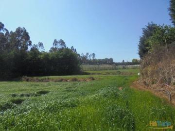terrenos para cultivo