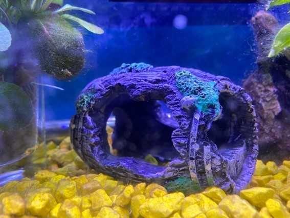 Barril artificial para aquário