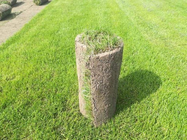 Trawa z rolki wykładanie ogrodów