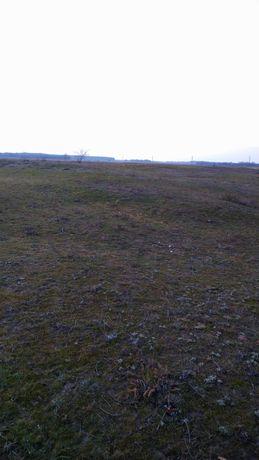Земельна ділянк (участок) в Сотницькому .