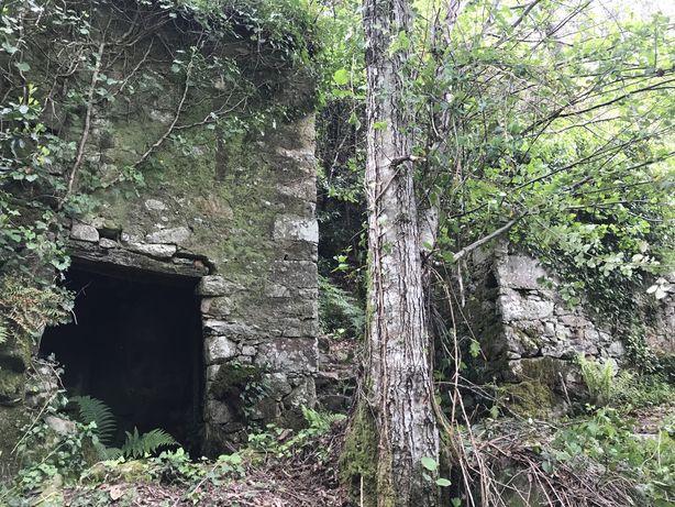 Moinho em Pomar da Serra - Pedra da Ferida/Loçainha - Ruina/Recuperar