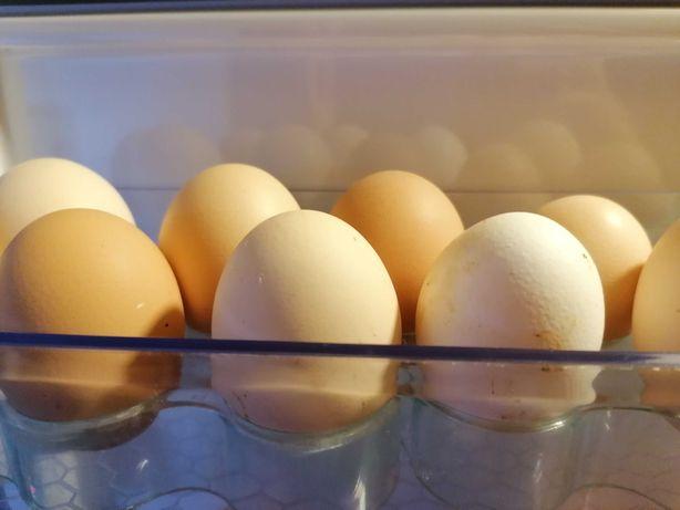 swojskie jajka I inną swojską żywność.