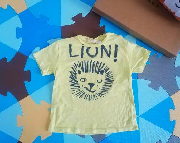 Zara 98 t-shirt lew koszulka