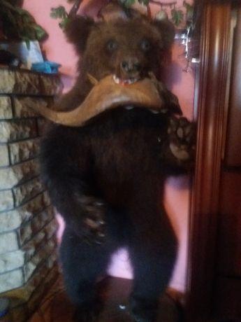 Чучело медвеженка