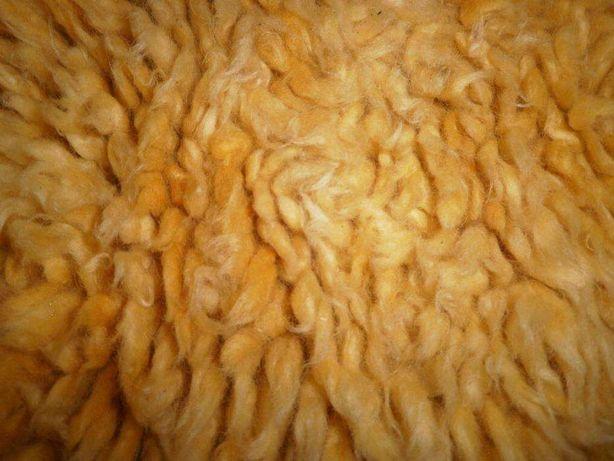 Carpete de lã com 2,00 X 1,45 X 4 cm pelo. Bela Barata Boa