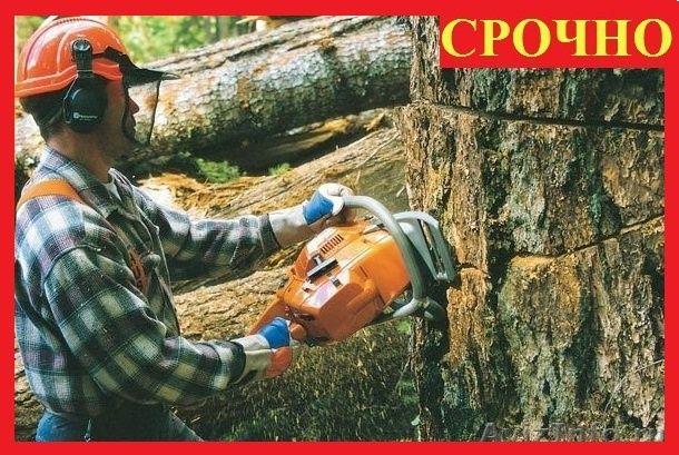 Расчистка участков, СПИЛ ДЕРЕВЬЕВ, покос травы Дробилка ВывозПо Днепру