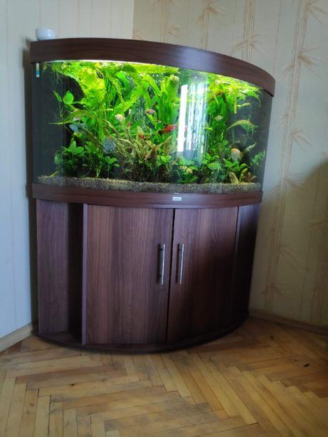 Продам панорамный аквариум 350 л