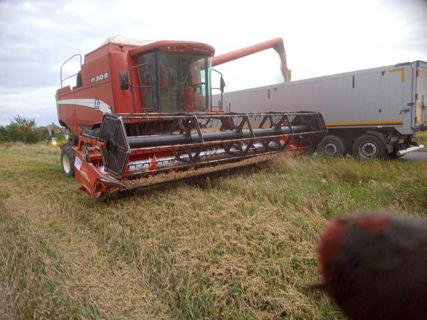 Koszenie rzepaku zboża traw trawy zbiór kukurydzy