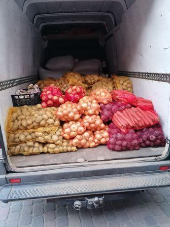 Ziemniaki, cebula, pietruszka, wiejskie jaja. Dostawa pod dom gratis