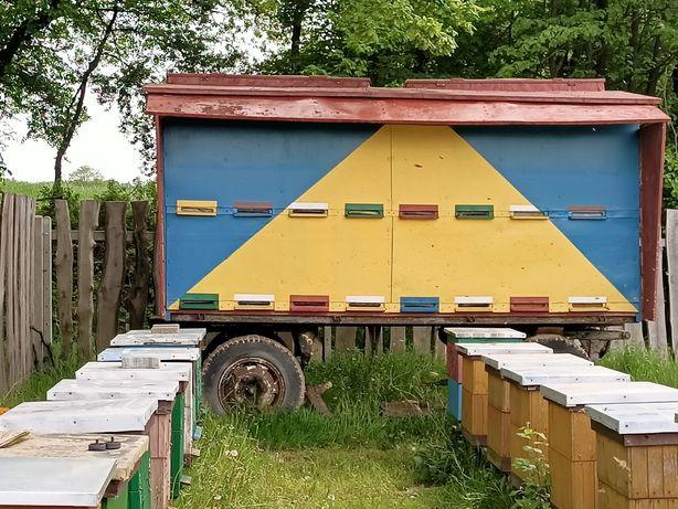 Wóz pszczelarski REZERWACJA!