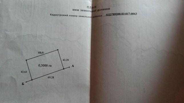 Участок Ясногородка, Макаровский р-н, 30 соток.