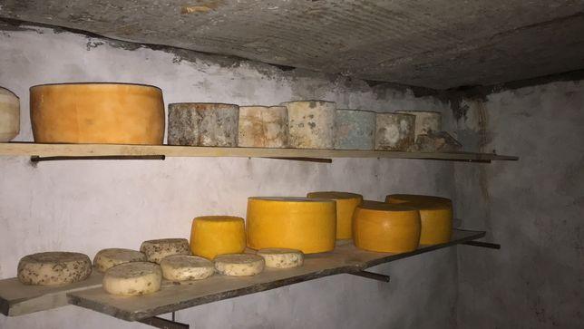 Домашний сыр козий