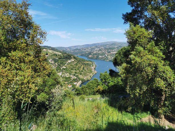 Moradia em pedra com vistas para o rio Douro