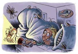 Уничтожение тараканов, клопов, блох 100 % результат