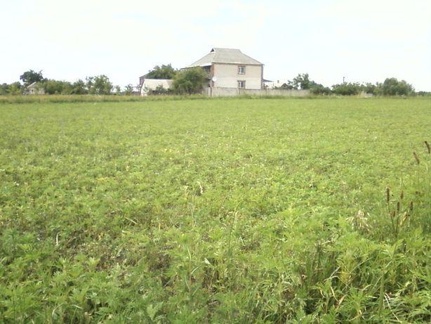 Продам загородный дом в живописном месте