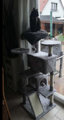 Dibea drapak dla kota SZARO BEŻOWY 145cm