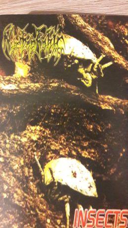 Nyctophobic - Insects kaseta