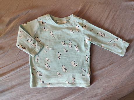 Bluzka w pieski - dalmatyńczyki, bluzka next, 3-6 miesięcy, długi r