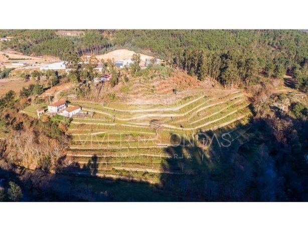 Quinta inserida em lote c/ 90.000 m2, em Cabeceiras de Ba...