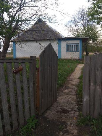 Продажа земли, Киевская область