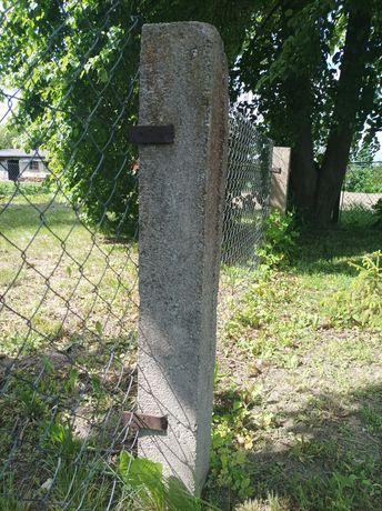Słupki betonowe  Ogrodzeniowe