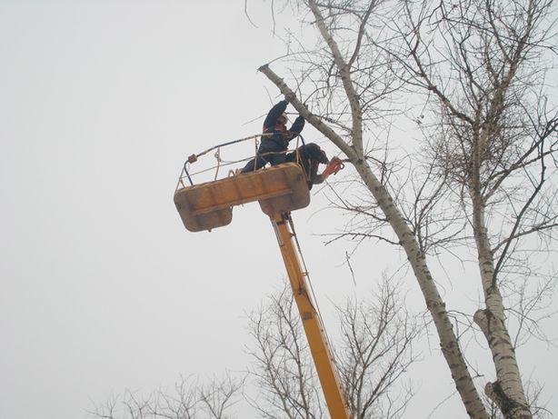 Спил Обрезка Удаление деревьев Расчистка уборка участка Выравнивание.