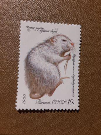 """Продам марки 5 шт 1980 г. из коллекции """" Ценные породы пушистых зверей"""