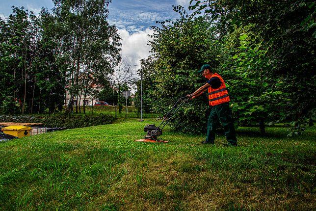 Koszenie trawników, pielegnacja zieleni, nasadzenia