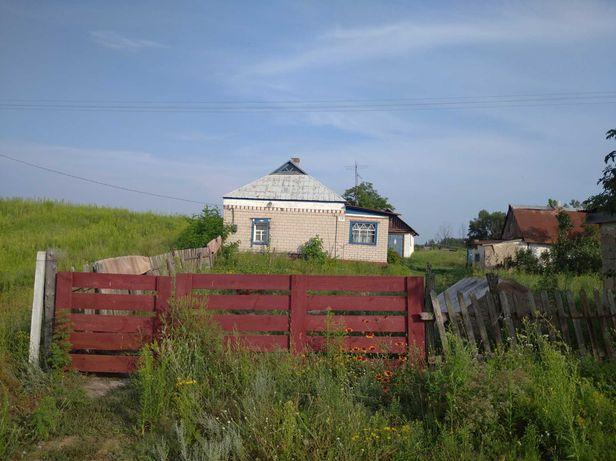 Дом с участком 2,4 га, в селе Шульговка