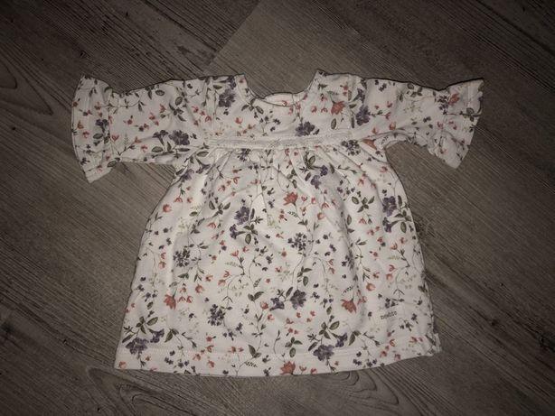 Sukienka newbie 62