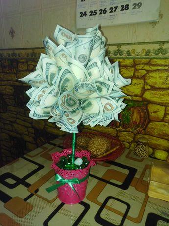 Топинарий, денежное дерево