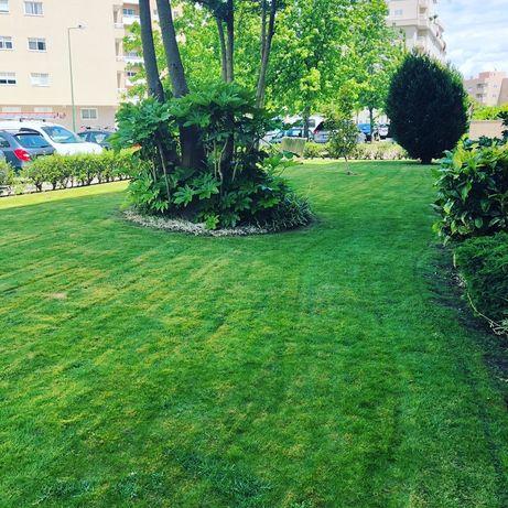 Serviços de jardinagem/Limpeza de terrenos