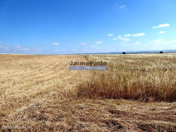 570 000 m2 terra agrícola p/ SEQUEIRO. Portugal, Baixo Alentejo, Beja.