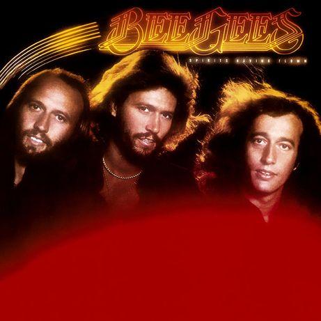 Discos Vinil - Música dos Anos 80