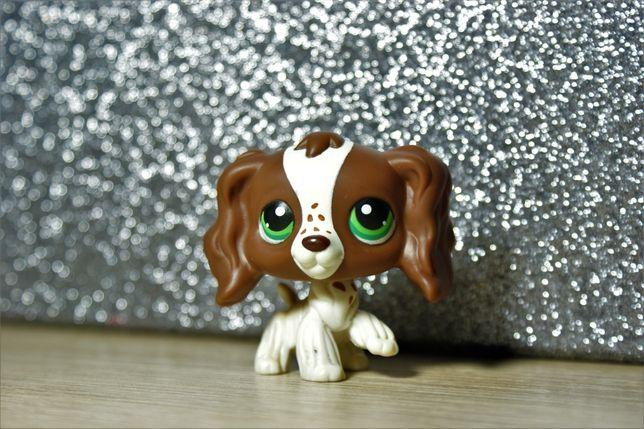 Littlest pet shop spaniel
