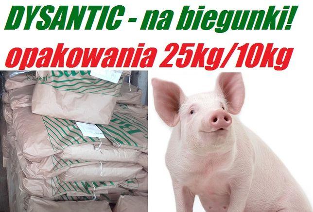 DYSANTIC - zapobiegnij BIEGUNKOM u trzody - opakowania 10 i 25 kg!