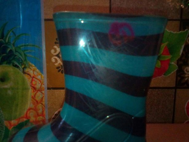 Резиновые сапожки, сапоги, гумові чоботи