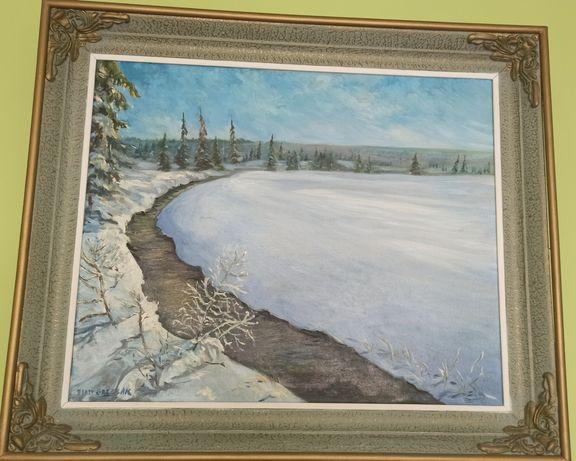 Obraz Zimowy pejzaż