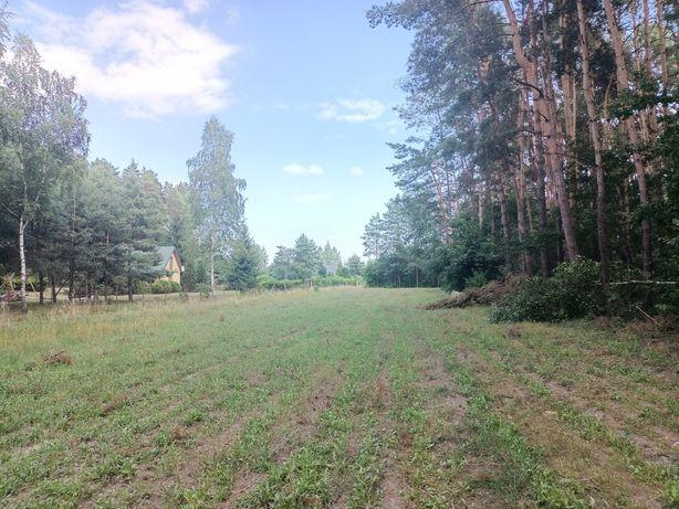 Działka rekreacyjno-budowlana z lasem(0,91ha)