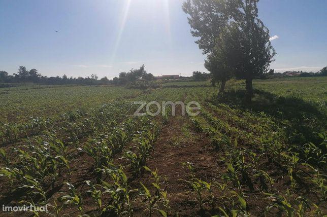 Terreno agrícola com 850 M2 Fradelos Famalicão
