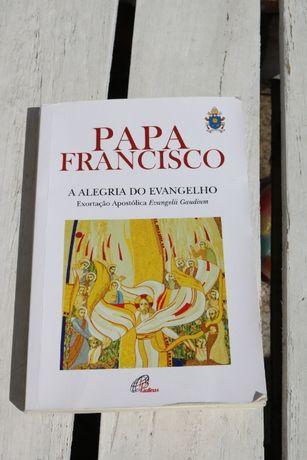 Papa Francisco - A Alegria do Evangelho