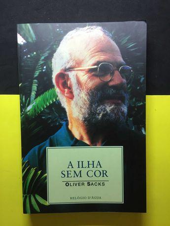 Oliver Sacks - A ilha sem cor (Portes CTT Grátis)