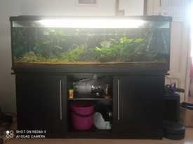 Akwarium 370L, Pokrywa, Filtr, Szafka pod akwarium
