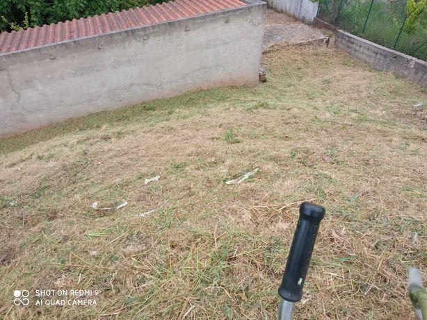 Terrenos verdes limpos